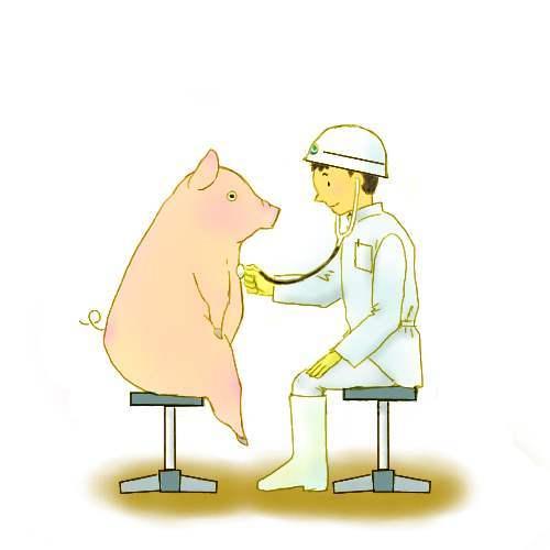 病気の検査について(と畜検査・...