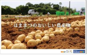 おいしい農産物
